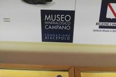 museo_campano