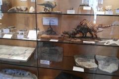 museo_campano_2